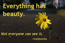 Everything Has Beauty Quotes Best Of Everything Has BeautyNot Everyone Can See It Beauty Quote