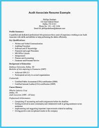 How To Do A Resume Online Unique 17 Elegant Make Free Resume Line