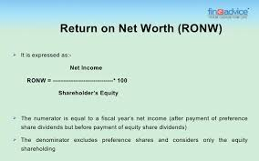 Company S Net Worth Return On Net Worth