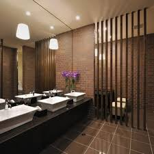 Small Picture Public Restroom Design Ideas Pictures Remodel and Decor