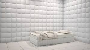 Excellent Room With Padded Walls Pics Design Inspiration