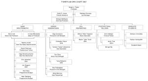 Medical Center Organizational Chart 22 Unbiased Call Center Organizational Structure Pdf