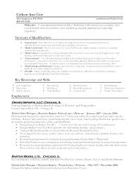 Basic Resume Format Australia. Resume Layout Templates Best Sample ...