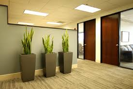 office pot plants. and last of all check out one plant installation that studio b designs did at a local law firm office pot plants d