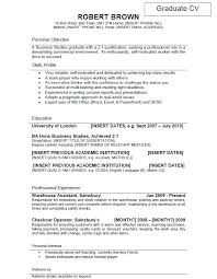 Professional Profile Resume New Skills And Experience Cv Yeniscale Delectable Professional Profile Resume