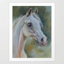 gray arabian horse portrait arab horse head oil painting art print