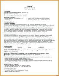 Technical Skills For Resume Extraordinary Technical Skills Resume Entry Level It Resume Sample Technical