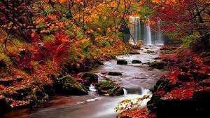Fall Pictures for Wallpapers (70+ ...