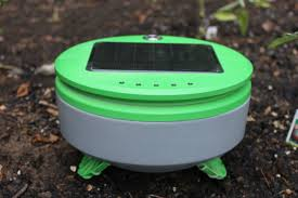 the inventor of the roomba just launched a weed killing robot named tertill