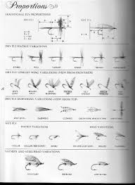Fly Fishing Flies Chart Proportions Chart Arizona Fly Fishing Forums