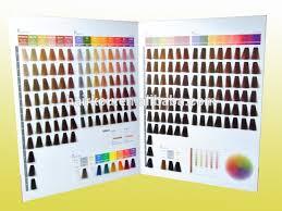 Salon Professional Supplies Pro Colour Chart China Hair Color Chart Wholesale
