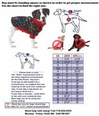 Bond And Co Dog Size Chart Bond And Co Dog Clothes Size Chart Size Info