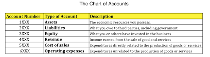 How The Chart Of Accounts Can Help You And Why You Should Care