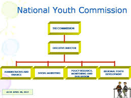 Nyc Organizational Chart Nyc Organizational Chart National Youth Commission