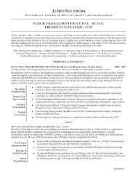 Resume Examples For Executives Fascinating Job Summary Examples For Resumes Mycola