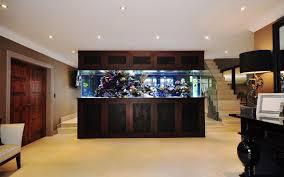 office aquariums. Footballer\u0027s Pad Office Aquariums