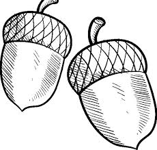 Acorn Coloring Sheet Acorn Coloring Pages 10 2368