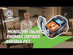 Моющий <b>пылесос Thomas DryBOX</b> Amfibia Pet для борьбы с ...
