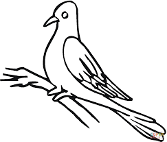 Small Picture Pigeon 12 coloring page Free Printable Coloring Pages