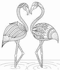 55 Elegant Flamingo Kleurplaat Afbeeldingen Kleurplaatsite