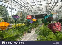 the artwork of glass artisan dale chihuly on display at the new york botanical garden in 2006