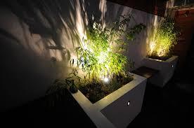 Landscape Lighting Moonlight Effect Copper 12v Led Tree Light Led Lighting Factory