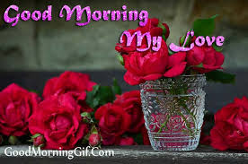 30 good morning rose images photo for