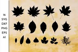 It is our responsibility to let every user quickly find the high quality free clipart material that they need. Leaves Collection Leaves Silhouette Fall Leaves Svg 855069 Objects Design Bundles