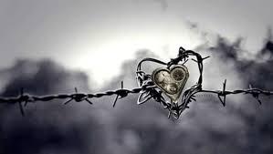 Amour Quand Tu Nous Plein La Vache Rose