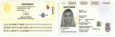 """Résultat de recherche d'images pour """"copie pièce d'identité"""""""