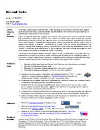 Technical Support Executive Resume Examples