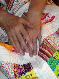 Lee County Quilters – The Lee County Story & Hands that Quilt 1 Adamdwight.com