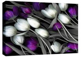 on black and white tulip wall art with tulip flowers spray black purple white red grey