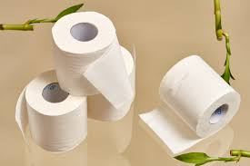 We Tried Tree-Free Toilet Paper \u0026 Here\u0027s What We Thought ...