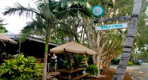 Live Music In Byron Bay Booking Gigs Or Perusing The Local Treehouse Byron Bay