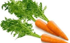 Imagini pentru frunze de morcovi