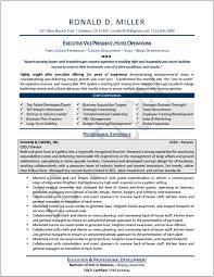 Resume Template Executive Executive Resume Sample Enderrealtyparkco 22