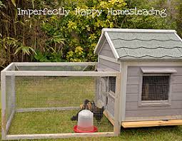 1624 Best Chickens Images On Pinterest  Raising Chickens How To Keep Backyard Chickens
