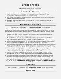 Executive Assistant Resume Template Word Awesome Template Executive