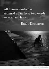 Emily Dickinson Quotes New New Emily Dickinson Quote
