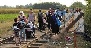 Пролемы мигрантов