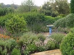 Small Picture Mediterranean Gardens