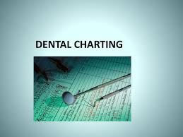 Hills Canine Dental Chart Ppt Dental Charting Powerpoint Presentation Free Download