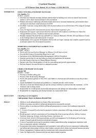 Client Relationship Management Resume Manager Relationship Manager Resume Samples Velvet Jobs