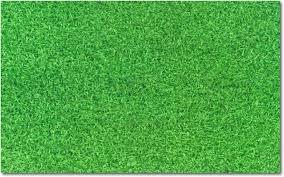 fake grass carpet. Artificial Grass Carpet For Dogs Fake C