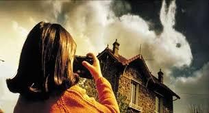 Blog de Frases e Pensamentos: Eternas são as nuvens - texto publicado em  28/11/2012 - HILDA LUCAS