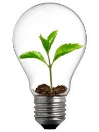 New Leaf Light Bulbs New Range Of Light Bulbs From Bulbrite Ecofriend