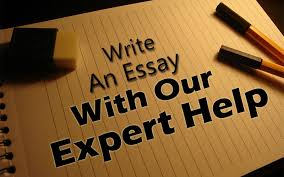 write an essay our expert help just your essay write an essay our expert help