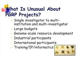 Doctoral Dissertation Research Improvement Grants FC
