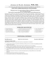 sample resume of hr professionals sample resume human resources